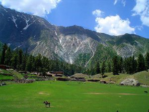 A view of Fairy Meadows beauty