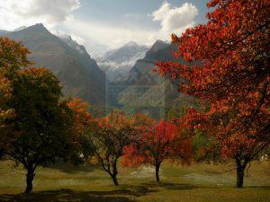Hunza Valley View of Diran peak