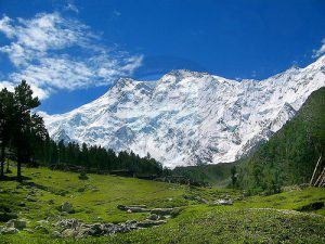Nang Parbat from Fairy Meadows