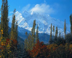 Rakaposhi (7788m) view from Hunza Valley
